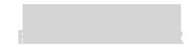 logo PMI WFMANAGER-grigio